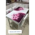 Комплект разтегателна маса + 4 стола Nora I